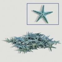 Estrella Mar Azul